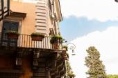 """Постер, картина, фотообои """"здание с зелеными растениями в цветочных горшках в Риме, Италия"""""""