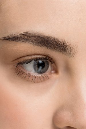 Photo for Close up of attractive young woman with blue eye looking away - Royalty Free Image
