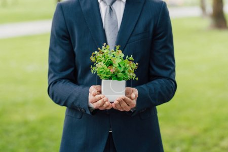cropped view of young businessman with plant in flowerpot standing in park
