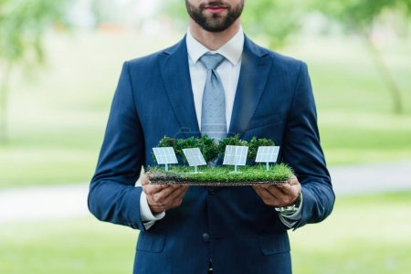 Photo for Cropped view of young businessman holding park layout with sun batteries while standing in park - Royalty Free Image