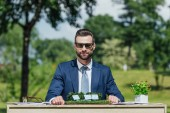 """Постер, картина, фотообои """"young businessman in sunglasses sitting at table with sun batteries layout and flowerpot with plant and looking at camera """""""
