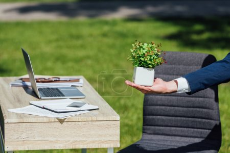 Photo for Cropped view of young businessman near table with laptop, smartphone and notebooks and holding flowerpot with plant - Royalty Free Image