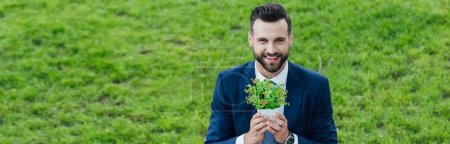 Photo for Panoramic shot of young businessman holding flowerpot with plant, smiling and looking at camera - Royalty Free Image