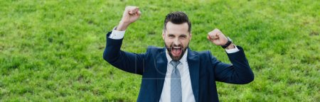 panoramic shot of excited young businessman rising hands in air while standing in park
