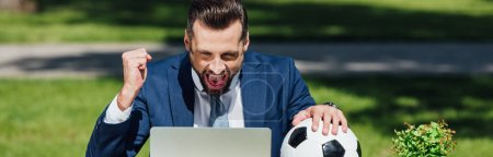 Foto de Panoramic shot of young businessman watching on laptop, cheering on team and holding soccer ball - Imagen libre de derechos