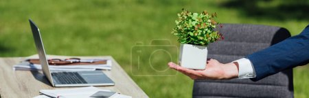 Foto de Panoramic shot of man holding flowerpot with plant standing in park near table with laptop - Imagen libre de derechos