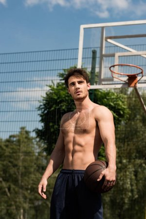 Photo for Shirtless basketball player with ball at basketball court in sunny day - Royalty Free Image