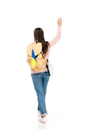 Photo pour Vue arrière de l'étudiant avec le sac à dos et la main ukrainienne d'ondulation de drapeau d'ondulant sur le blanc - image libre de droit