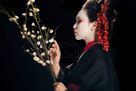 Photo pour Vue latérale de belle geisha dans le kimono noir avec les fleurs rouges dans les branches de sakura de fixation de cheveux d'isolement sur le noir - image libre de droit