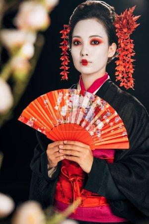 Photo pour Foyer sélectif de belle geisha dans le kimono noir avec des fleurs dans le ventilateur de main de fixation de cheveux et les branches de sakura d'isolement sur le noir - image libre de droit