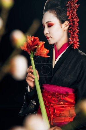 Photo pour Foyer sélectif de geisha dans le kimono noir avec les fleurs rouges et les branches de sakura d'isolement sur le noir - image libre de droit