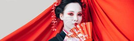 Photo pour Belle geisha en kimono noir avec ventilateur de main et tissu rouge sur le fond isolé sur le blanc, projectile panoramique - image libre de droit