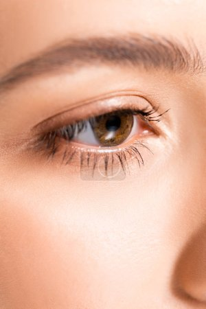 Photo for Close up view of woman with brown clear eye and perfect skin - Royalty Free Image