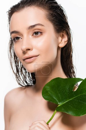 beautiful wet naked young woman with palm leaf with water drops isolated on white