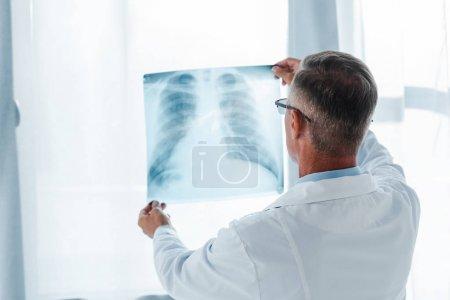 Photo pour Vue arrière du docteur dans le manteau blanc retenant le rayon X dans l'hôpital - image libre de droit