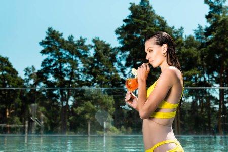 Foto de Hermosa chica en traje de baño con cóctel en el resort con espacio de copia - Imagen libre de derechos