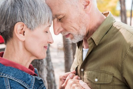 Photo for Side view of senior couple holding hands and touching foreheads with closed eyes in forest - Royalty Free Image