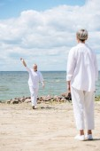 """Постер, картина, фотообои """"задний вид пожилой женщины и мужчины, размахивая рукой возле реки в солнечный день"""""""