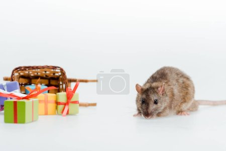 Photo for Small rat near toy sleigh and colorful gifts isolated on white - Royalty Free Image