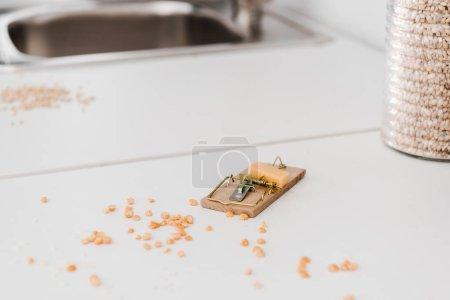 Photo pour Petit piège à souris en bois avec cube de fromage près des petits pois sur la table - image libre de droit