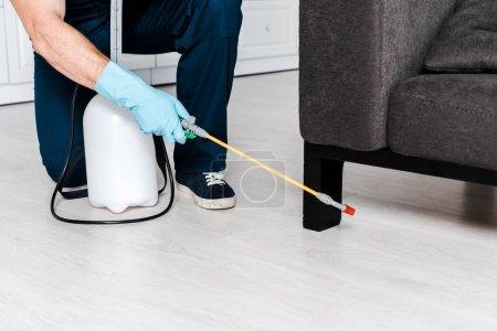 Photo pour Vue recadrée de l'homme dans les gants uniformes et bleus de latex retenant le pulvérisateur avec le pesticide près du sofa - image libre de droit