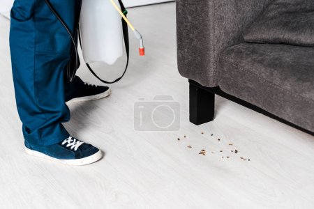 cropped view of exterminator holding toxic spray near cockroaches and sofa