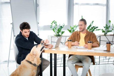 Photo for Handsome man feeding golden retriever and his friend looking at him - Royalty Free Image