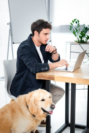 handsome businessman using laptop and golden retriever sitting in office