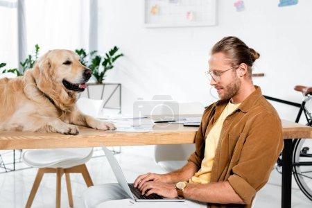 Photo pour Homme d'affaires beau utilisant l'ordinateur portatif et le retriever d'or se trouvant sur la table - image libre de droit