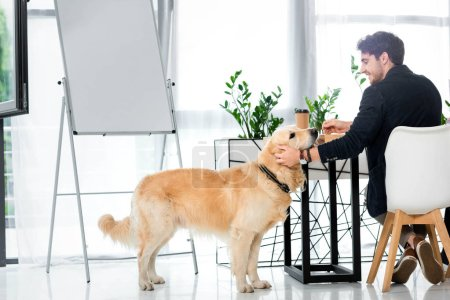 back view of smiling businessman sitting at table and stroking golden retriever sitting on floor