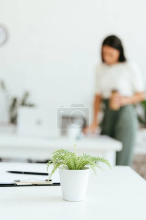 Photo for Selective focus of green plant near clipboard and pen on table - Royalty Free Image