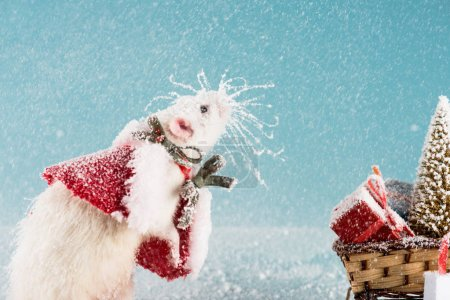 Foto de Rat in costume and wicker sled with christmas tree and gift boxes in New Year - Imagen libre de derechos