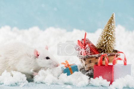 Photo for Rat and wicker sled with christmas tree and gift boxes in New Year - Royalty Free Image