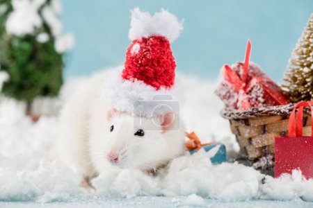 Foto de Rat in santa hat and wicker sled with gift boxes in New Year - Imagen libre de derechos