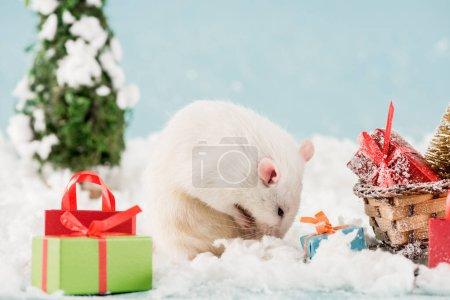 Foto de Rat, bottle and wicker sled with gift boxes in New Year - Imagen libre de derechos
