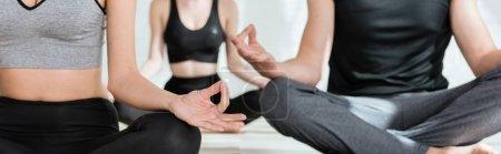 Photo pour Crochet vue de jeunes femmes et d'hommes pratiquant le yoga en demi-pose de lotus, photo panoramique - image libre de droit