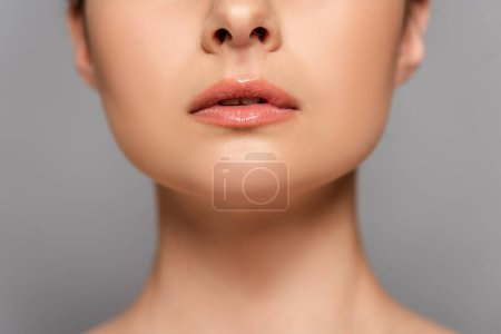 Photo for Cropped view of female glossy lips isolated on grey - Royalty Free Image