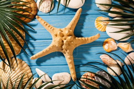 Photo for Top view of seashells, starfish and palm leaves on wooden blue background - Royalty Free Image