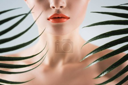 cropped view of woman with orange lipstick near palm leaves on white