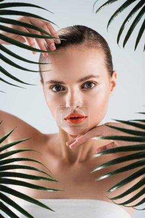 Photo pour Séduisante femme touchant le visage près des feuilles de palmier sur blanc - image libre de droit