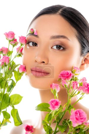 Photo for Portrait of young asian woman with floral decor on face near pink roses isolated on white - Royalty Free Image