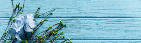 Photo for Top view of wooden blue background with blossoming branches and flowers, panoramic shot - Royalty Free Image