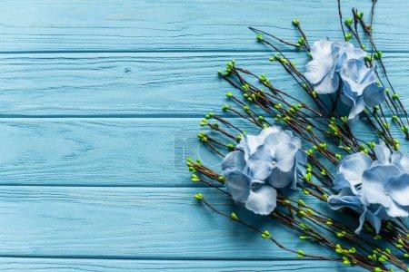 vrchní pohled na dřevěné modré pozadí s kvetoucími větvemi a květy