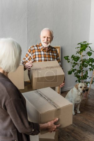 senior couple holding cardboard boxes in new house while dog sitting near