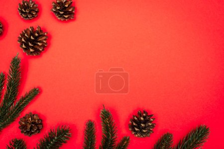 Photo for Top view of cones, spruce branches on red background - Royalty Free Image