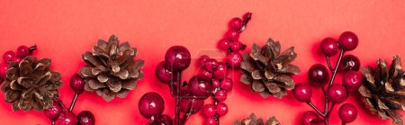 Photo for Top view of cones and berries on red background, banner - Royalty Free Image