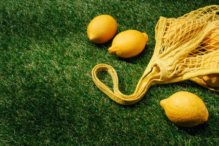 closeup view of lemons and net on green lawn
