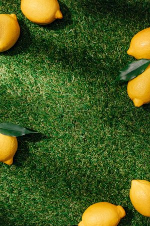 Photo for Top view of lemons with leaves on green lawn - Royalty Free Image