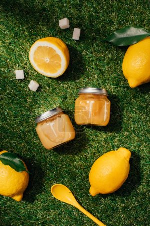 Photo for Top view of lemons, sugar, puree in jars and spoon on green lawn - Royalty Free Image