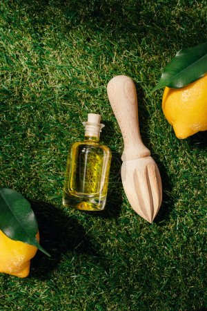 elevated view of wooden squeezer, lemons and oil bottle on green lawn